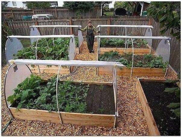 Как своими руками сделать огород красивым своими руками фото 12